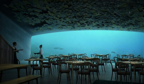 The largest underwater restaurant in the world is opening soon